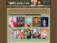100 Camel Toe